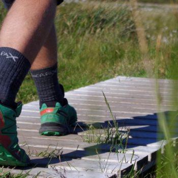 Ponožky z merino vlny, které můžete nosit po celý rok