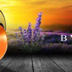 Bvlgari Omnia Indian Garnet: Vůně inspirovaná Indií