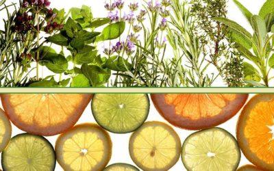 5.díl: Citrusové a aromatické vůně