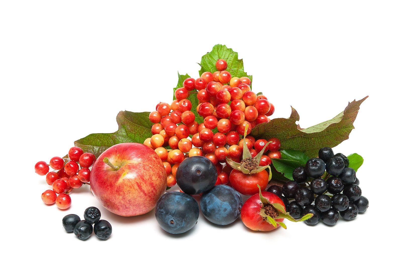 Nejen lesní ovoce