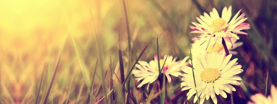 Jaro ve znamení parfémových novinek