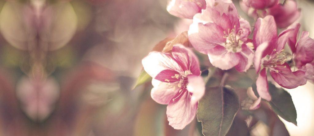 Trendy parfémy pro jaro 2015