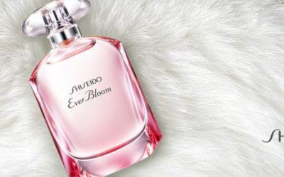Shiseido Ever Bloom: Zimní květina