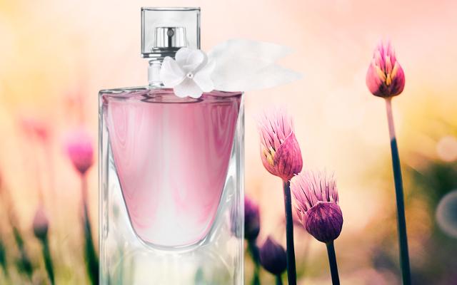 Bude patriť nová LVEB Florale medzi najúspešnejšie jarné ikony?