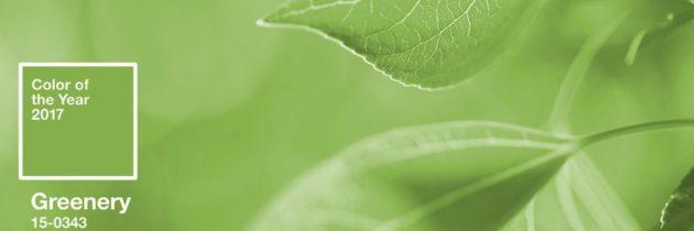 Greenery – v roku 2017 ideme na zelenú