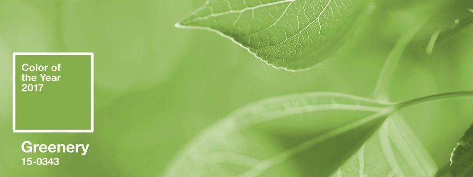 Greenery - v roku 2017 ideme na zelenú