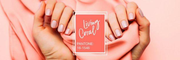 Living Coral, nová farba Pantone a hit roka 2019