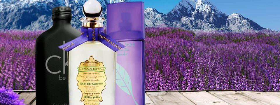 Levanduľa - vôňa a relax v jednom