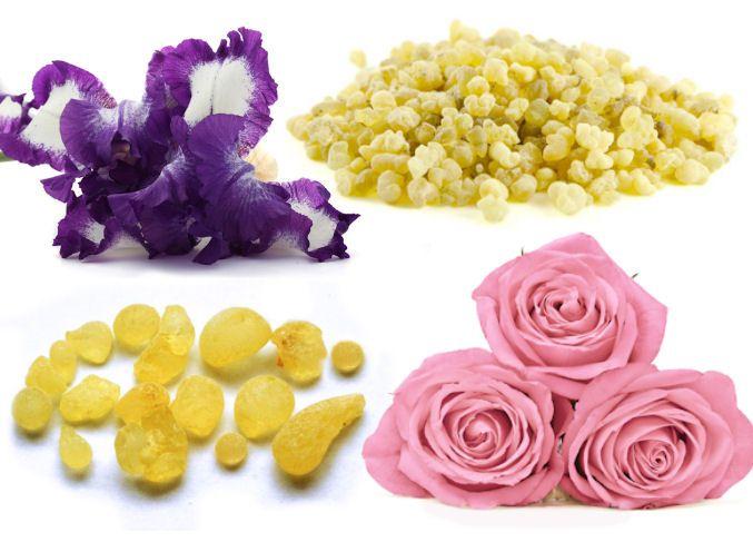 Vône starých Egypťanov: kosatec, olibanum, mastix a iné druhy živíc, ruže - všetky tóny obsahujú parfumy na Elnino.sk