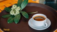 Haka Coffee