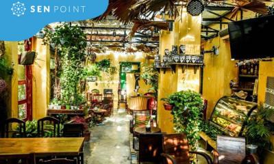 Điểm hẹn cà phê xanh mướt dành cho hội đam mê cây cảnh tại Hà Nội
