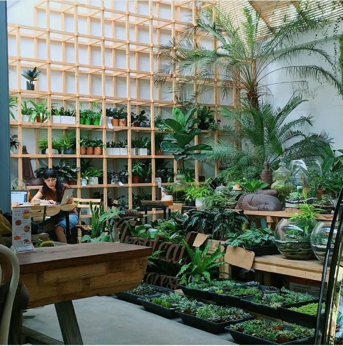 Những quán cafe chụp ảnh đẹp ở Hà Nội 2