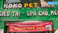Koko Pet - Vương quốc thú cưng
