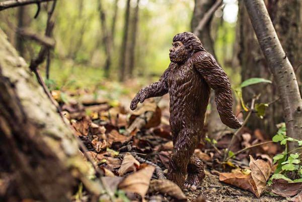 gorilla-toy