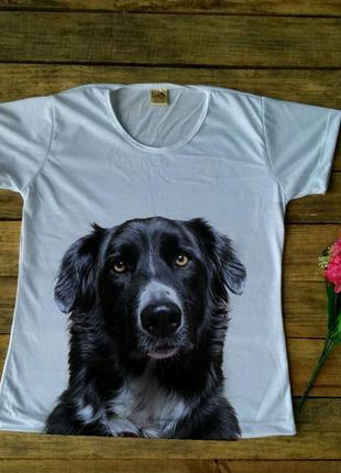 T- shirt border collie