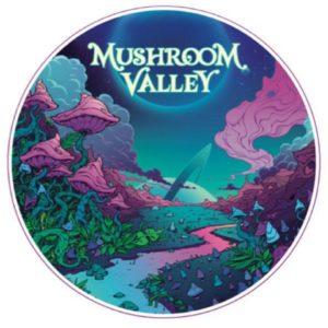 Mushroom Festival 2020.Mushroom Valley 2020 Australia Shamanic Groove
