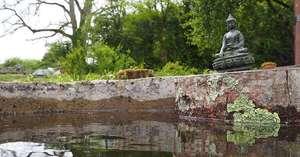 DCL/size1200x628/Garden_Well_Buddha_Reflection_1200x628.jpg