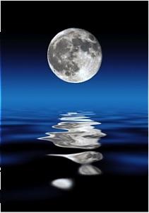 Leiden/moon_on_water.jpeg