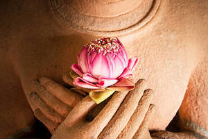 Shamb_Training_Images/Lotus_Buddha_Heart.jpg