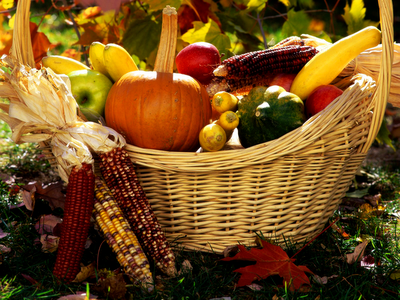 autumn-harvest.png