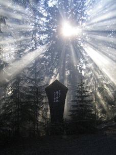 shrines/shinto_shrine_in_forest_50.JPG