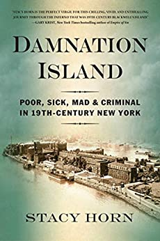 Book cover for Damnation Island: Poor, Sick, Mad, and Criminal in 19th-Century New York