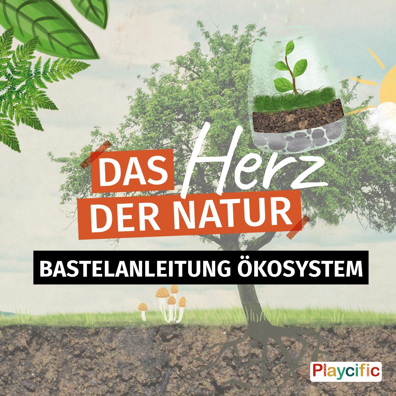 Bastelanleitung Ökosystem