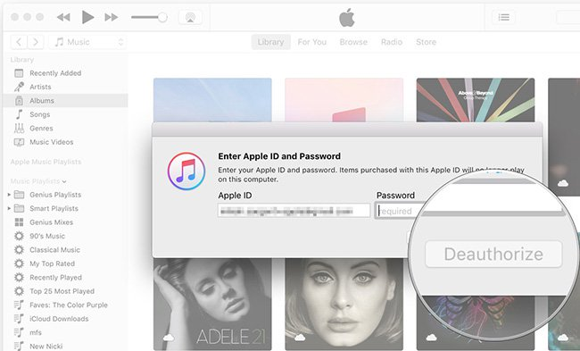 how to find out the apple id on a mac