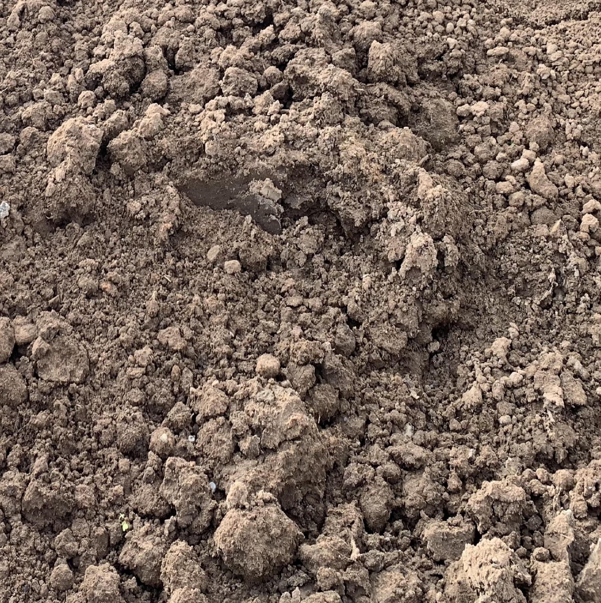 Multi Purpose Top Soil
