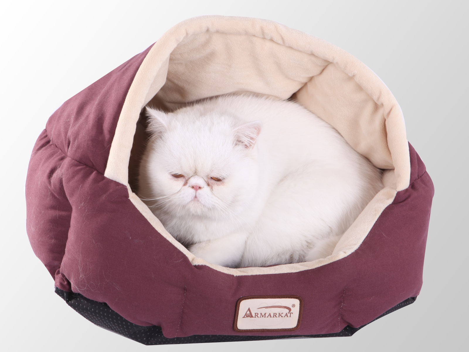Burgundy & Beige Small Dog & Cat Bed