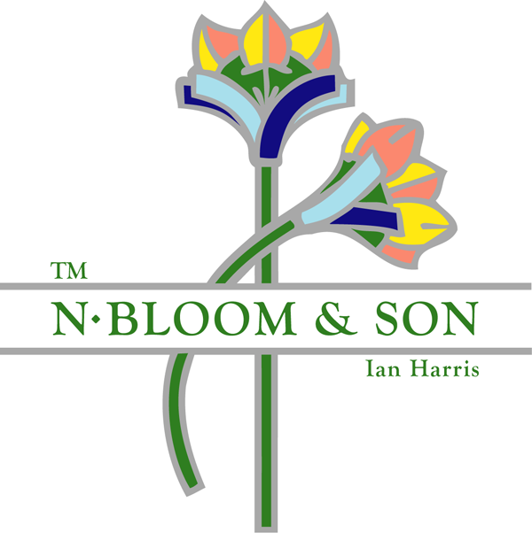 N. Bloom & Son