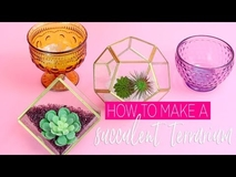 Simple Terrarium How To