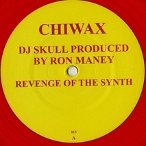 DJ Skull - Revenge of the Synth - 12