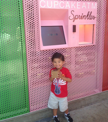 Sprinkles Cupcakes, Ice Cream and Cookies img23