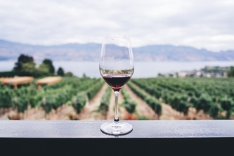 Wine Tasting Trips For Wine Enthusiasts