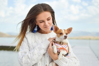 Advices For Traveling With Your Pet By Air