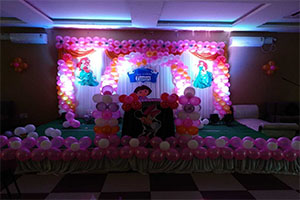 Princess Colorful Theme Decoration -