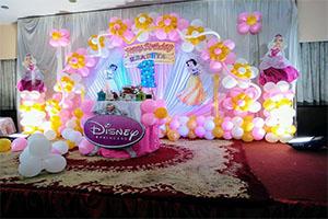 Princess Birthday Theme Decoration -