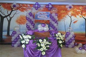 Naming Ceremony Theme Decoration -