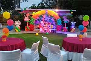 Multi Color Jungle Theme Decoration -