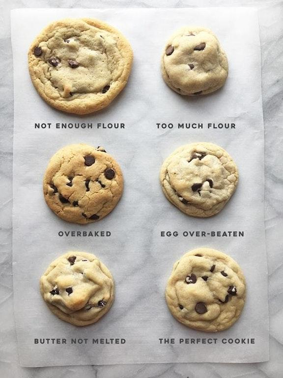 Every Type of Chocolate Chip Cookie - and how to Fuck it up by crenk