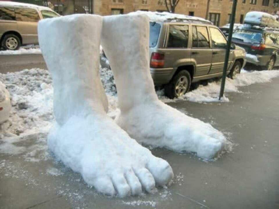 We Have 2 Feet of Snow Here!  by crenk