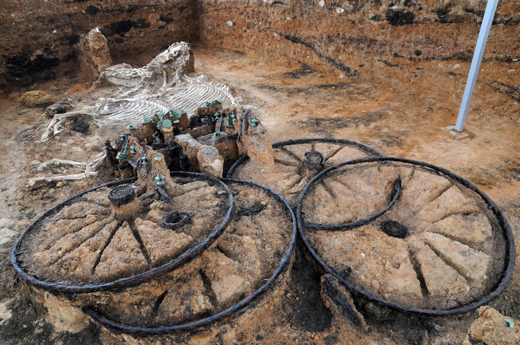 2000 years old Thracian chariot with horse skeletons. Found in Bulgaria by crenk