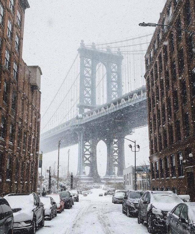 Amazing Snow Day in Brooklyn in 2017 by crenk