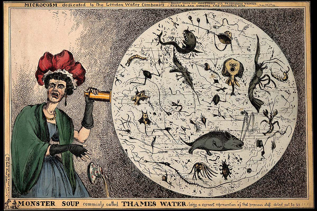 woman observing monsters in a drop of London water