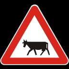 1118 - Živali na vozišču