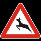 1119 - Divje živali na cesti