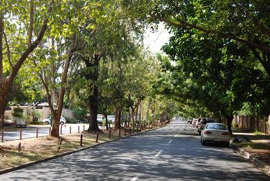 Obras Públicas desarrolla plan de asfalto en avenidas de la capital