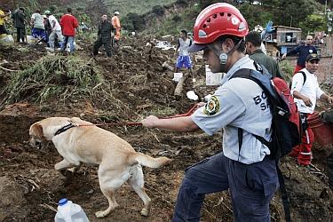 Rescatan 13 cadáveres de los 145 sepultados por gran alud en Colombia