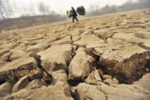 Temperatura en 2010 iguala récord de años más calientes registrados